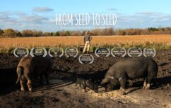 Cinematheque at Home: From Seed to Seed